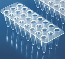 24-well ABgene PCR Plate, Semi-Skirted (Blue)