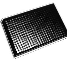 384-well ABgene PCR Plate Standard (Black)
