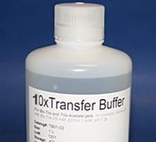 10X Transfer Buffer