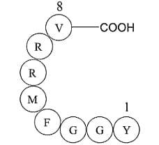 Adrenorphin, Free Acid