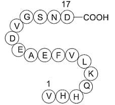 Amyloid Beta-Peptide(12-28) (human)