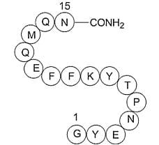 Amyloid Precursor C- Terminal Peptide