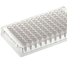 Armadillo 96-Well PCR Plate (Clear, White Wells)