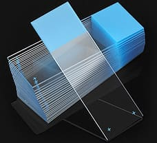 Charged Microscope Slides-1358