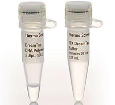 DreamTaq DNA Polymerase, 500 U