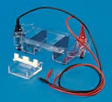 Electrode Set-7123